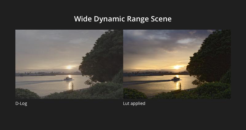 DJI Zenmuse X7 Wide Dynamic Range Scene