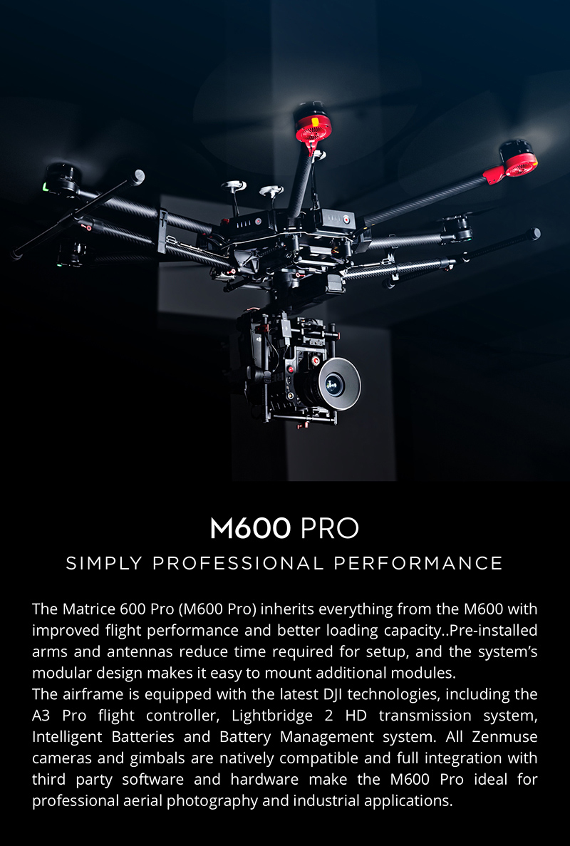 Protected DJI Matrice 600 Pro - Simply Professional performance